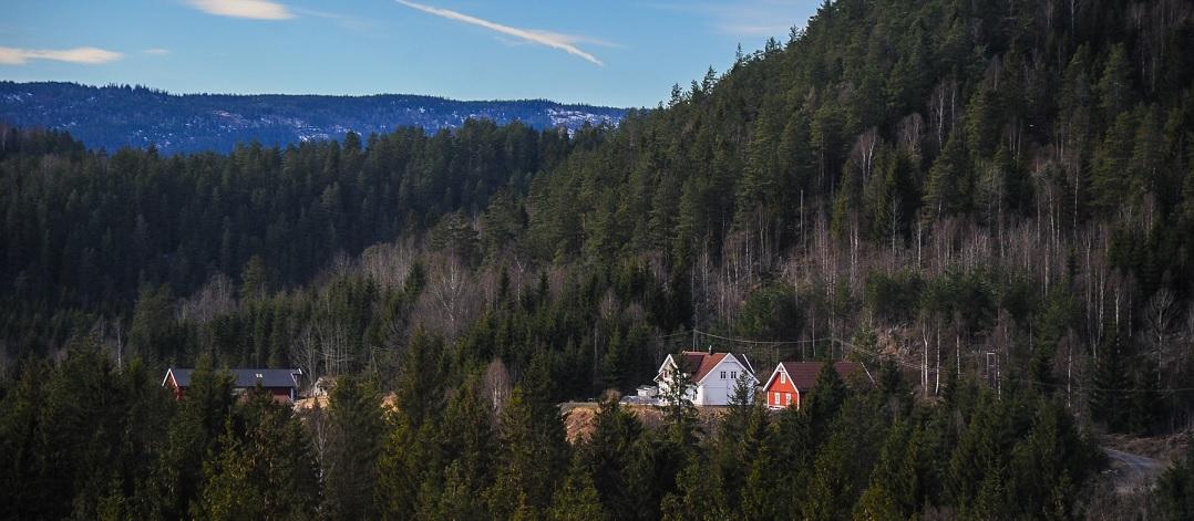 Norwegia, domy